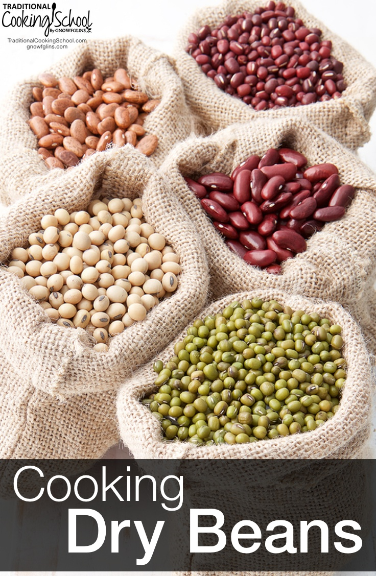 Cooking Dry Beans | Don't be scared of beans, or even dry beans! Once you discover how easily you can cook and prepare them, how delicious and digestible they are when prepared well, and how much money you save starting with dry beans, you won't go back to canned. | TraditionalCookingSchool.com