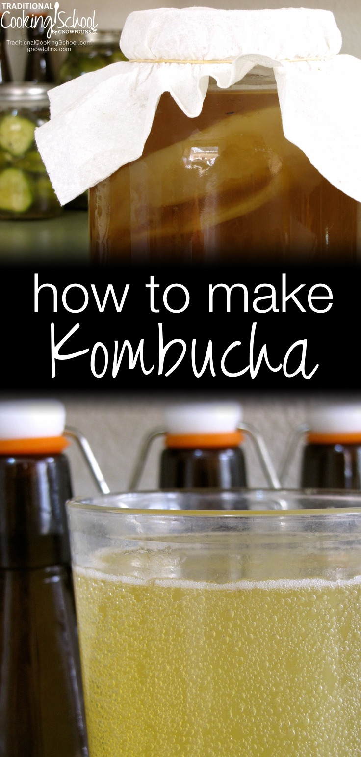 How To Make Kombucha | Kombucha, from Russia, is a widely known and loved fermented, probiotic beverage. Both sweet and sour and naturally carbonated by fermenting gases, many people drink it like soda. Purported health benefits of drinking kombucha are: cancer prevention, arthritis treatment, improved digestion and immune booster. Just a few ounces a day can be helpful in any of these issues! Though you can purchase Kombucha, it's very easy to make and here's how. Never had it? You just might love it! | TraditionalCookingSchool.com