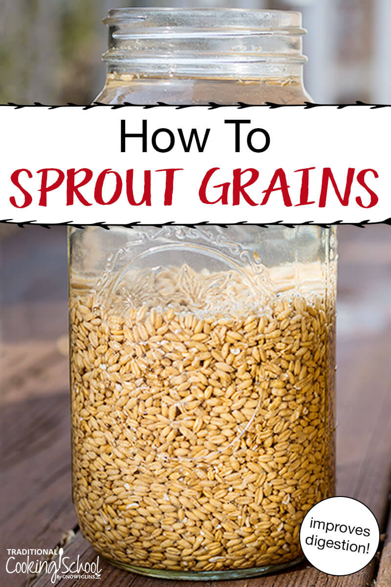 mason jar of sprouted grains