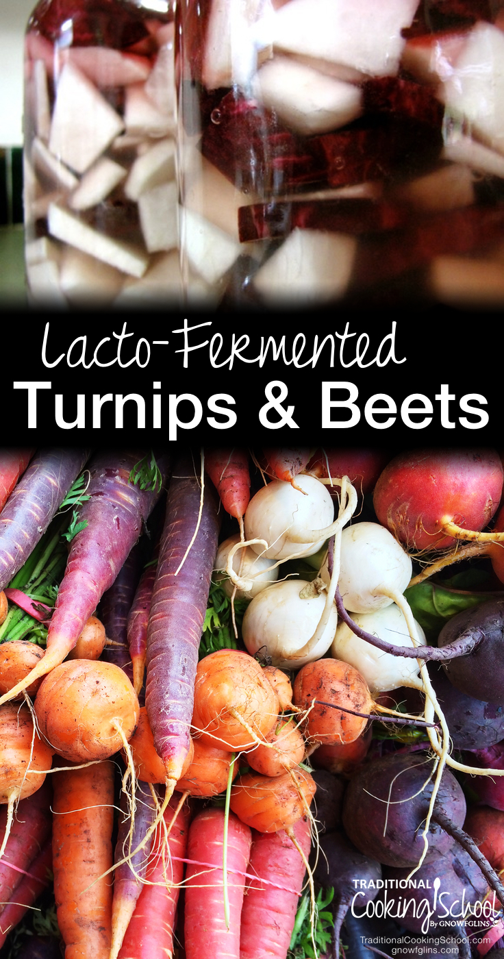 Lacto-Fermented Turnips and Beets | Lacto-fermented turnips and beets taste fabulous and are very easy to make. What I love the most about it is that I don't have to heat anything (though some recipes call for a bit of cooking) and that measuring is not that precise. This is the kind of anti-cooking I like! | TraditonalCookingSchool.com