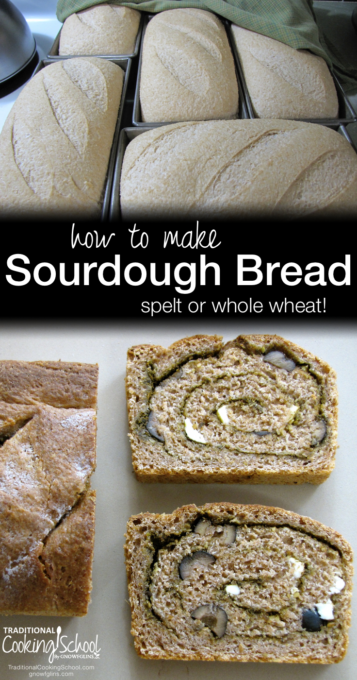 How To Make Sourdough Bread (Spelt Or Whole Wheat!) | As promised, here is the recipe I'm currently following for spelt sourdough bread -- for sandwiches or free-form loaves. I really love working with spelt because the resulting baked goods are usually light, fluffy and moist. | TraditionalCookingSchool.com