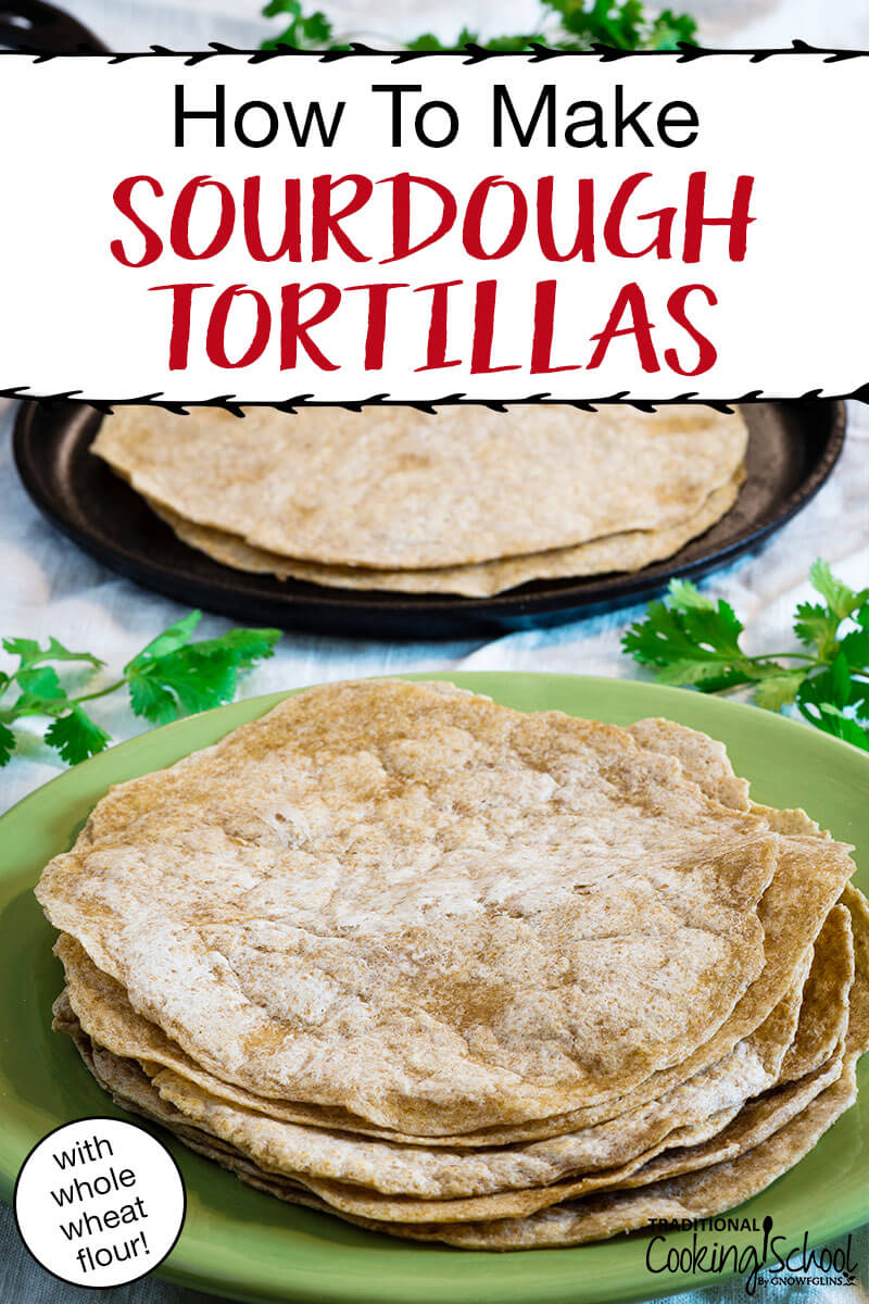 How To Make Sourdough Tortillas {with whole wheat flour!}   Oh, yumm... These sourdough tortillas with whole wheat flour were awesome! Chewy, soft, and pliable! The second day, I heated them up in a warm skillet, one by one, where they retained all their first day softness.   TraditionalCookingSchool.com
