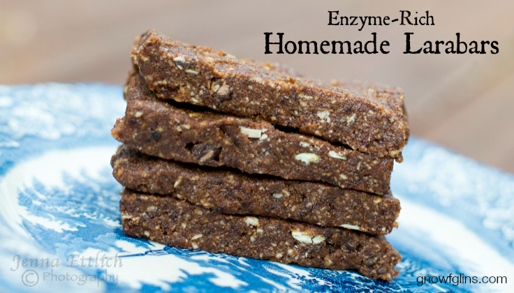 Enzyme-Rich Homemade Larabars | I've long wanted make a homemade Larabar, but I really got inspired this week when reading about foods that are excellent sources of digestive enzymes. The key ingredients in Larabars -- dates and nuts -- are two of those foods. I use soaked and dehydrated nuts in these homemade Larabars, making them a digestive enzyme-rich food! | TraditionalCookingSchool.com