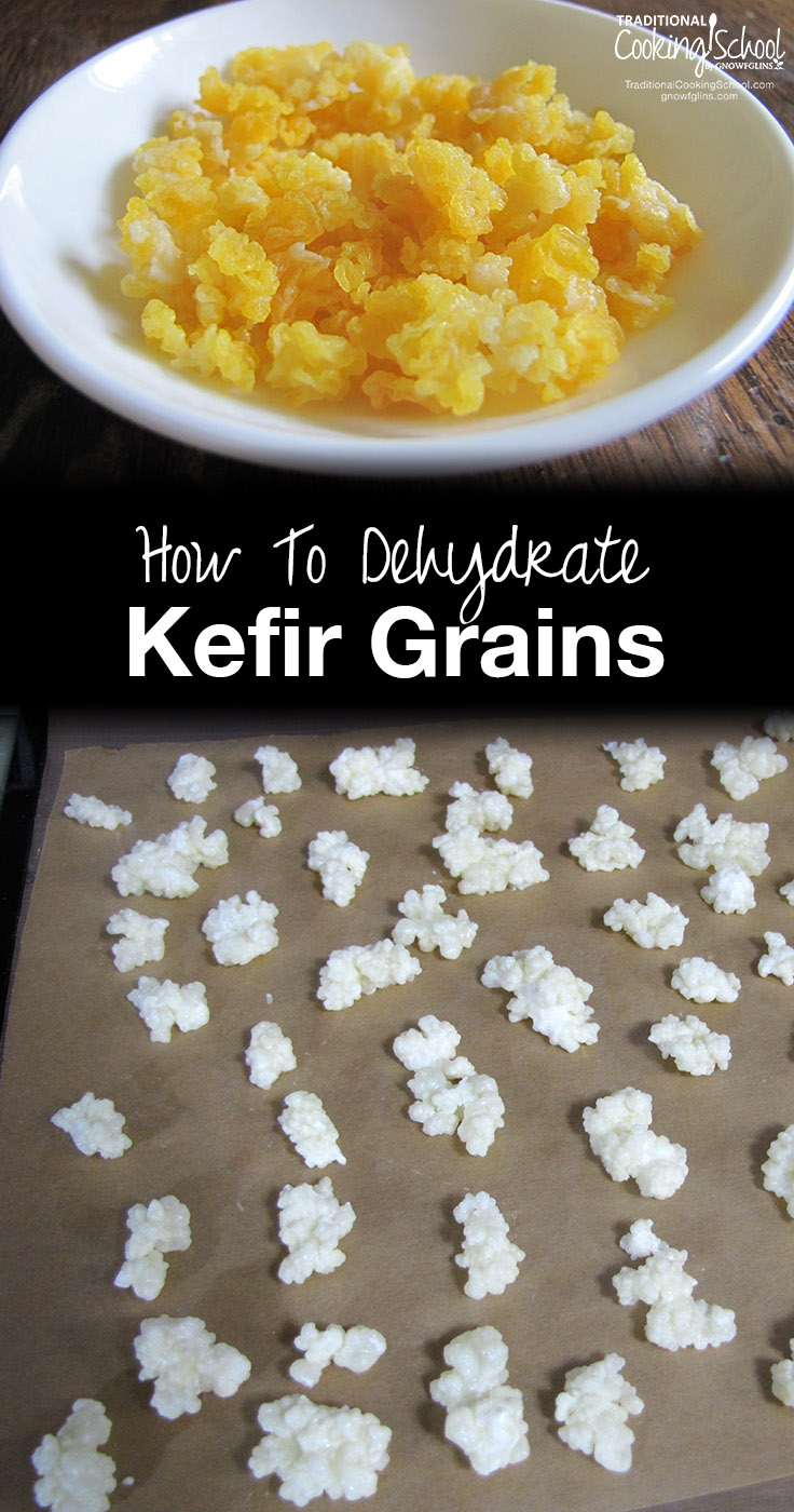 "How To Dehydrate Kefir Grains | With every batch of milk kefir, the kefir grains grow... So once you've been making kefir for a while, you're bound to have a problem: ""What to do with the abundance of grains?"" It's easy! Dehydrate them, then save for future use, or ship them to friends! 