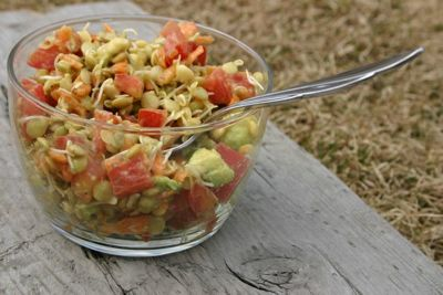 sprouted lentil slaw