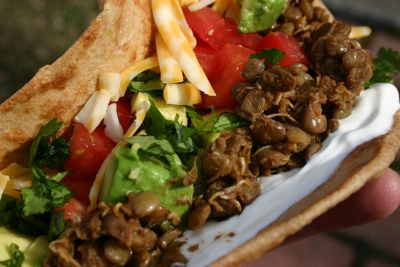 sprouted lentil tacos