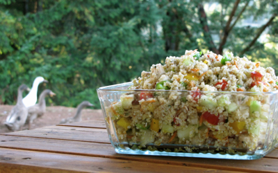 quinoa-garden-salad-ducks