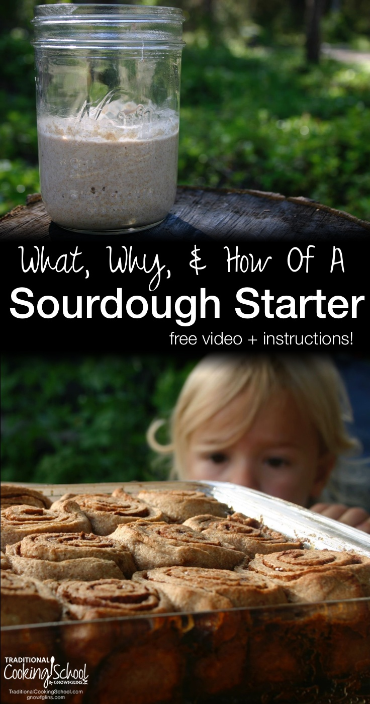 What Why & How Of A Sourdough Starter {free video + instructions!} | How to make a sourdough starter? What's happening in a sourdough starter? What's so great about sourdough bread? This video and sample chapter-- a free release from our Sourdough eCourse and eBook -- answer all those burning questions... and more! | TraditionalCookingSchool.com