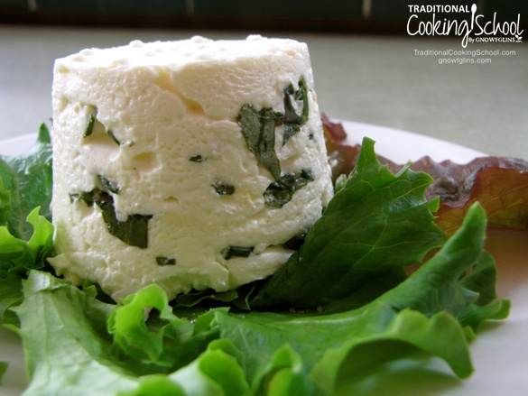 """Q & A: Hard Cheese Without Rennet?   """"Can I make hard cheese without rennet?"""" Michael asks. Here, I explain the process of making hard cheese, the importance of rennet, and answer Michael's question!   TraditionalCookingSchool.com"""