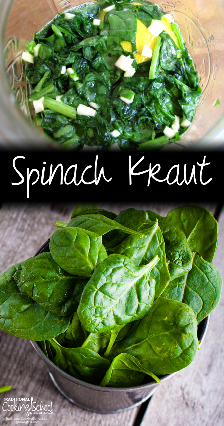Spinach Kraut   Did you know you can ferment all manner of greens? Yes, you can -- and it is a good idea because dark leafy greens are high in oxalic acid. Spinach kraut is a lemony fresh and salty take on regular old cabbage kraut.   TraditionalCookingSchool.com