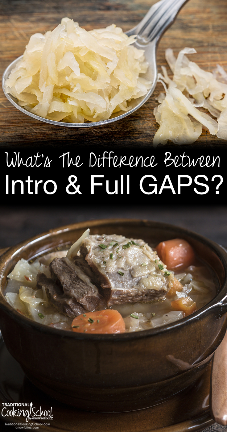 What's The Difference Between Intro and Full GAPS? | Onward and upward with our GAPS series! Today, I am going to talk about the overall goals and differences between the 2 phases of the GAPS Diet. | TraditionalCookingSchool.com
