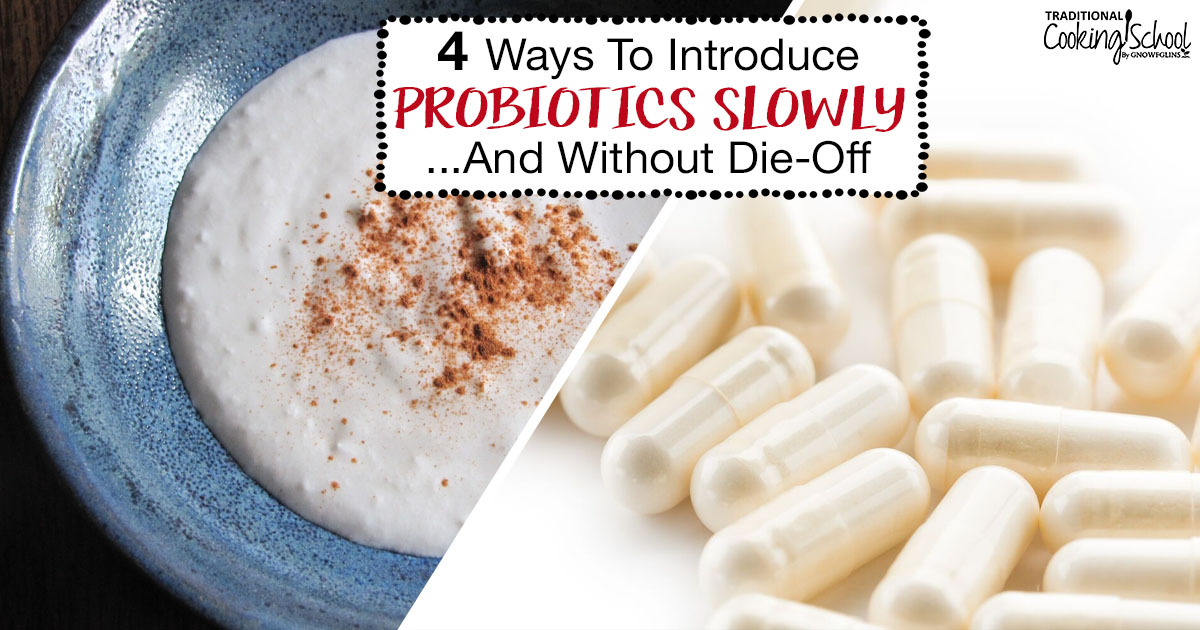 7 Tips For Introducing Probiotics Slowly & Without Die-Off