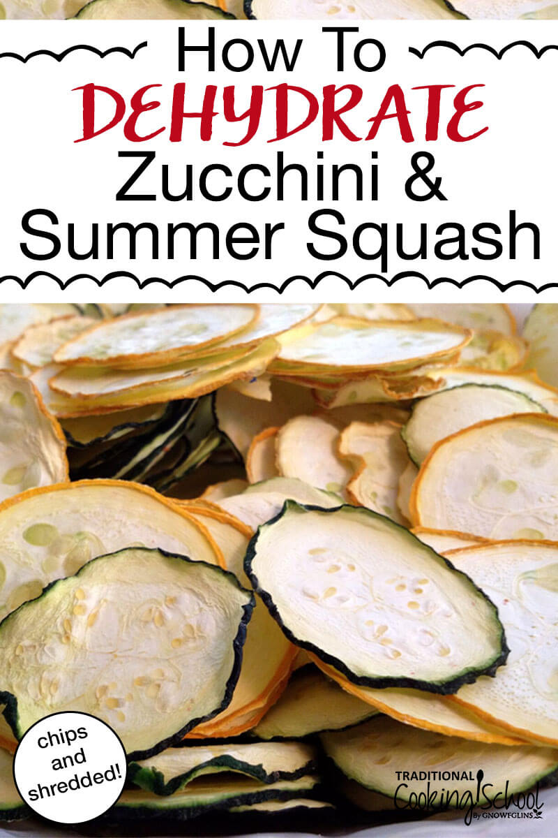 What do you do when zucchini and summer squash are exploding in your garden? Make chips, noodles or shreds! These recipes are the perfect, low carb healthy snacks and make for quick and easy meals. You can dehydrate them in your dehydrator or in your oven! #zucchini #squash #dehydrator #recipes #chips #noodles