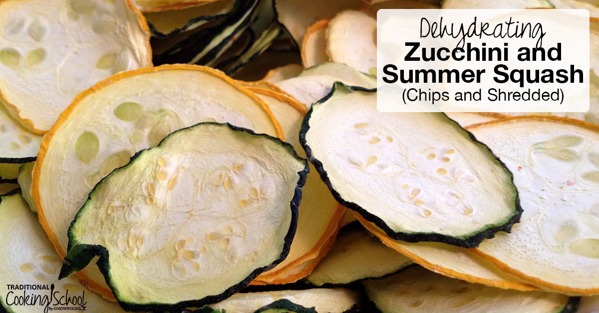 How to dehydrate zucchini summer squash forumfinder Images