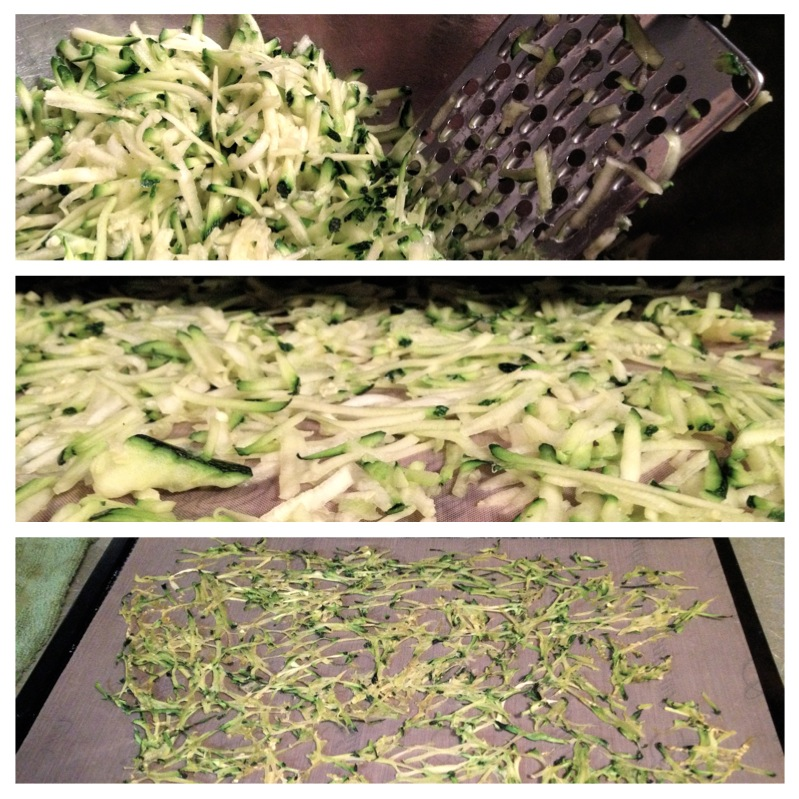 How To Dehydrate Zucchini & Summer Squash | For today's seasonal recipe round-up, I'd like to show you how to dehydrate zucchini and summer squash! Preserving an abundant harvest frugal idea. The two best ways I've found to dehydrate zucchini are: shredded and thinly sliced. The thinly sliced become zucchini chips and they're really good! | TraditionalCookingSchool.com