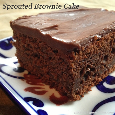 Looking for new desserts to try this winter? 3 Winter Desserts: Sweet Potato Cake, Chocolate Pixies, and Chocolate Brownie Cake. | TraditionalCookingSchool.com