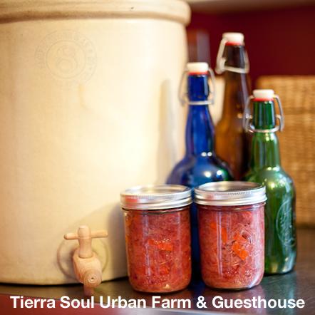 Tierra Soul Urban Farm & Guesthouse