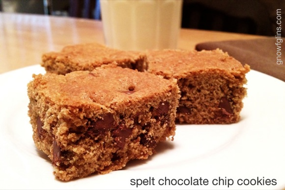 Sprouted Spelt Chocolate Chip Cookies | When we came off the GAPS diet late last year, I went back to my usual traditional grain preparation methods of soaking, sprouting and fermenting using whole wheat. Almost immediately, ... | TraditionalCookingSchool.com