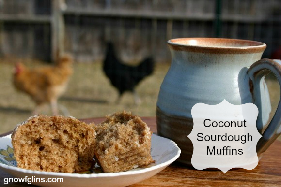 Erin's Coconut Sourdough Muffins | Oh, the joy that comes with bringing our dear ones delicious and nutritious treats! And on top of all this goodness, the recipe is highly adaptable. | TraditionalCookingSchool.com