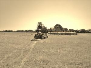 Summer-Heat-Taylor-Made-Ranch