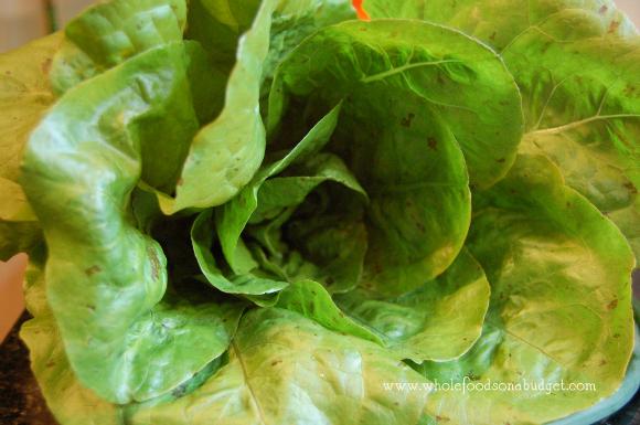 lettuce-wm-580p