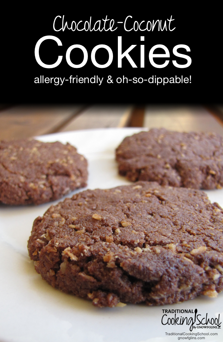 """Chewy Chocolate Coconut Cookies -- Allergy-Friendly & Oh-So-Dippable 