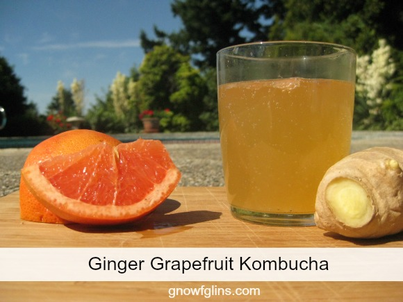 You'll love this Ginger Grapefruit Kombucha. It's light, citrus-y, and refreshing. And of course nourishing and probiotic — because it's kombucha. | TraditionalCookingSchool.com