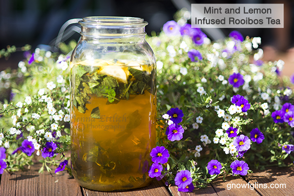 Using Real Food to Hydrate During Sports | Our society completely overhypes the need for processed, plastic-bottled 'sports drinks.' Thus, most of us don't realize we can keep ourselves more than adequately hydrated with simply water or by combining real ingredients like herbal tea, fresh herbs, sea salt, honey, lemon and coconut water. | TraditionalCookingSchool.com