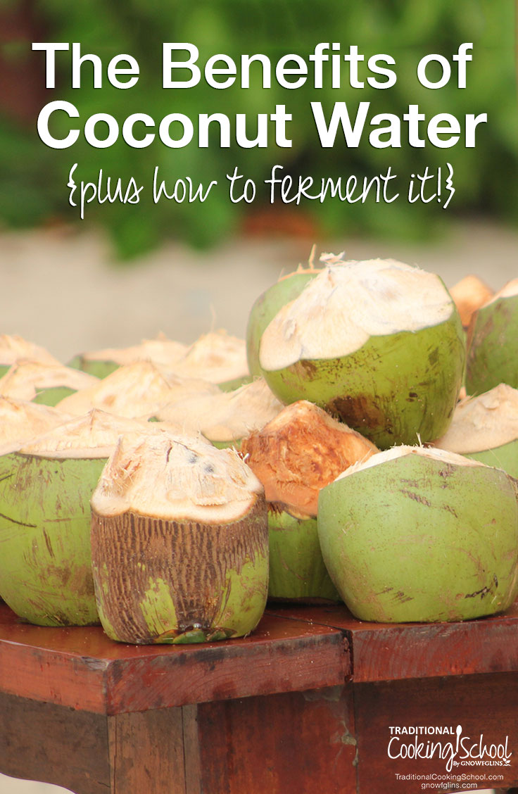 benefits of coconut water + how to ferment it
