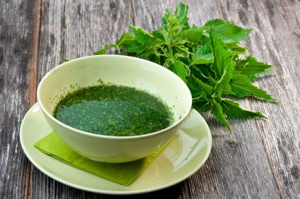 Stinging Nettle Part 2: Using Nettle in Everyday Life | You'll love the ideas shared on how you can use this useful herb in your kitchen. You can purchase dry nettle leaves or I'll show you how to gather your own and dry them at home. | TraditionalCookingSchool.com