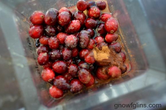 Cranberries in blender