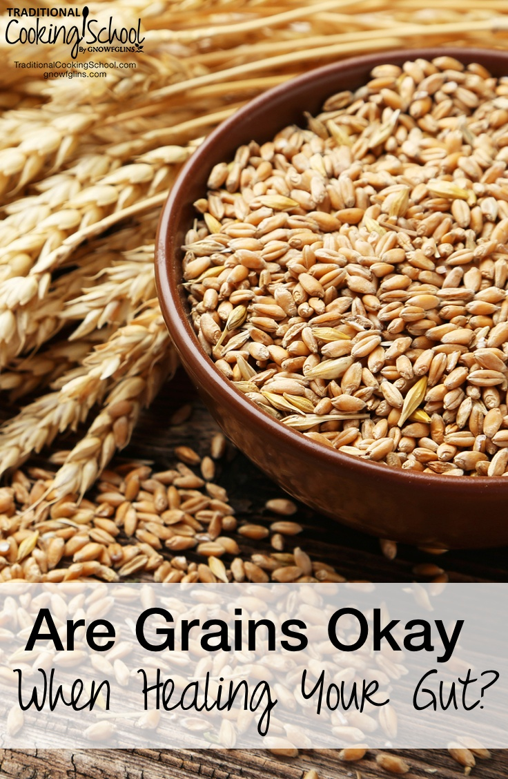 Are Grains Okay When Healing The Gut? | I'm really, really pleased to focus our attention on a question I often get asked -- is it okay to eat grains if I'm trying to heal my gut? I asked nutritional therapist Lydia Shatney, teacher of the online class Heal Your Gut, to step in and help us really understand this issue. | TraditionalCookingSchool.com