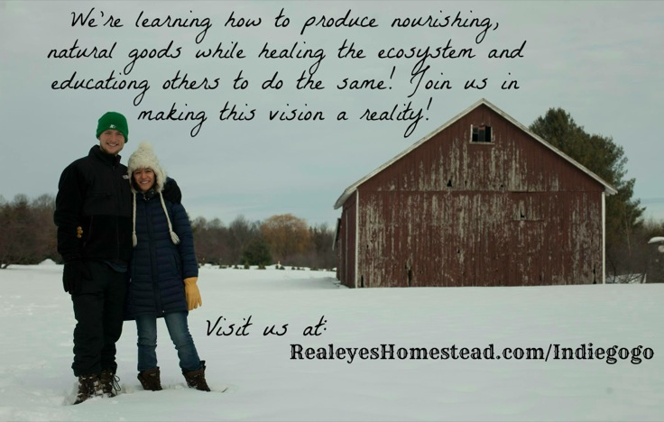 KYF #061: Realeyes Homestead | Interested in permaculture and holistic nutrition? Then you need to meet Levi Meeuwenberg and Brenda Baran, who are combining their passions as they revitalize their family farm in Michigan. In this podcast, I visit with Levi to learn how he went from professional freerunning to holistic agriculture. And he and Brenda need your help to restore Realeyes Homestead. Plus... the tip of the week! | KnowYourFoodPodcast.com/61