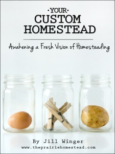 """Your Custom Homestead by Jill Winger. """"Contrary to popular belief, a homesteader doesn't have to be someone who lives on hundreds of acres with the perfect red barn and white picket fence. Your Custom Homestead is a 21-day guide to moving closer to your homesteading dreams, no matter where you live."""" 