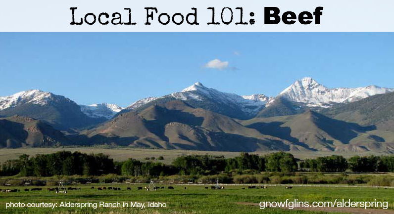 Local Food 101: Beef | How can you know if a particular food source is a wise and healthy choice? You start by talking to the farmer who produces it, asking questions that pertain to the type of food you're buying. In this post, we'll discuss beef. Use these questions when approaching your local farmer or source. | TraditionalCookingSchool.com