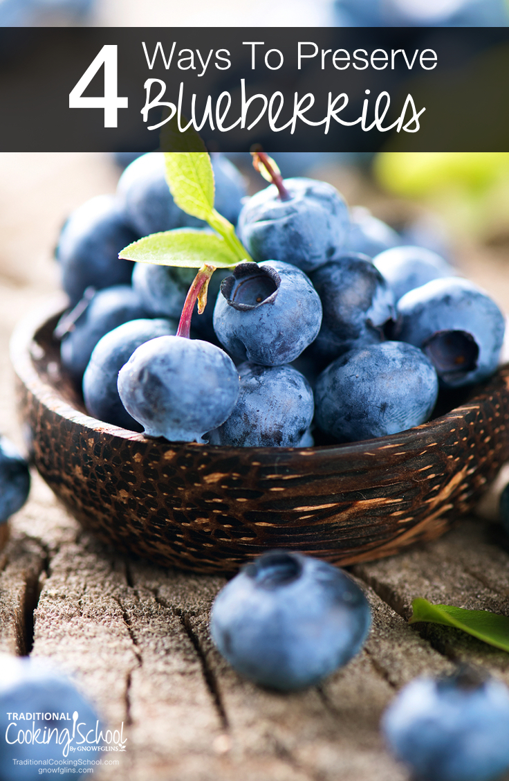 4 Ways To Preserve Blueberries | The only thing more glorious than eating plump, juicy blueberries straight from a bush is enjoying a sweet bite of blueberries in the dead of winter! One mouthful brings back the warmth of a July morning and the long days of summer. Here are 4 easy ways to preserve blueberries. | TraditionalCookingSchool.com