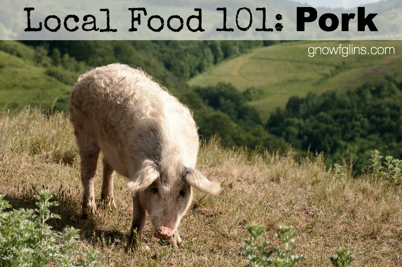 Local Food 101: Pork | How can you know if a particular food source is a wise and healthy choice? You start by talking to the farmer who produces it, asking questions that pertain to the type of food you're buying. In this post, we'll discuss pork, including processing options. Use these questions when approaching your local farmer or source. | TraditionalCookingSchool.com