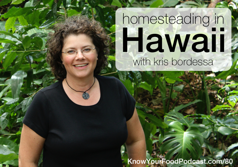 Homesteading in Hawaii | What can you grow in Hawaii? Why, tropical fruits! And Kris Bordessa is quite good at that -- plus chicken wrangling. She grew up on the mainland growing the usual summer crops but had to change gears completely when her family moved to Hawaii. On today's podcast, we talk about her homestead plus the local food community. | KnowYourFoodPodcast.com/80