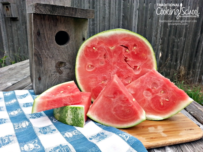 Watermelon On A Stick | Do you remember the large half-moons of watermelon? Taking giant bites with juice dribbling down your chin? Challenging each other to seed-spitting contests? We love watermelon! It's the fruit of summer memories, and these watermelon popsicles are sure memory-makers. | TraditionalCookingSchool.com