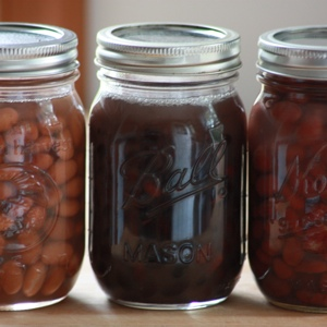 How To Can Beans The Nourishing Way   Canned beans are easily found on grocery store shelves, but by canning your own you can go further. And not just 1 -- but 2 -- steps further! Here are directions for *nourishing* canned beans, and you'll save money, too!   TraditionalCookingSchool.com