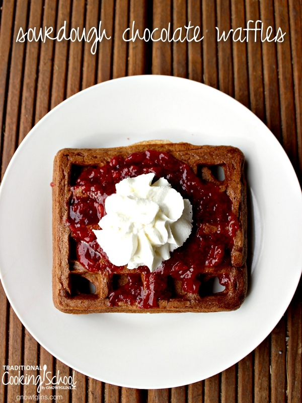 Is there anything better than chocolate at breakfast time? Especially when it's a fermented, sourdough, actually-good-for-you chocolate waffle? Yeah, I can't think of anything better either. | TraditionalCookingSchool.com