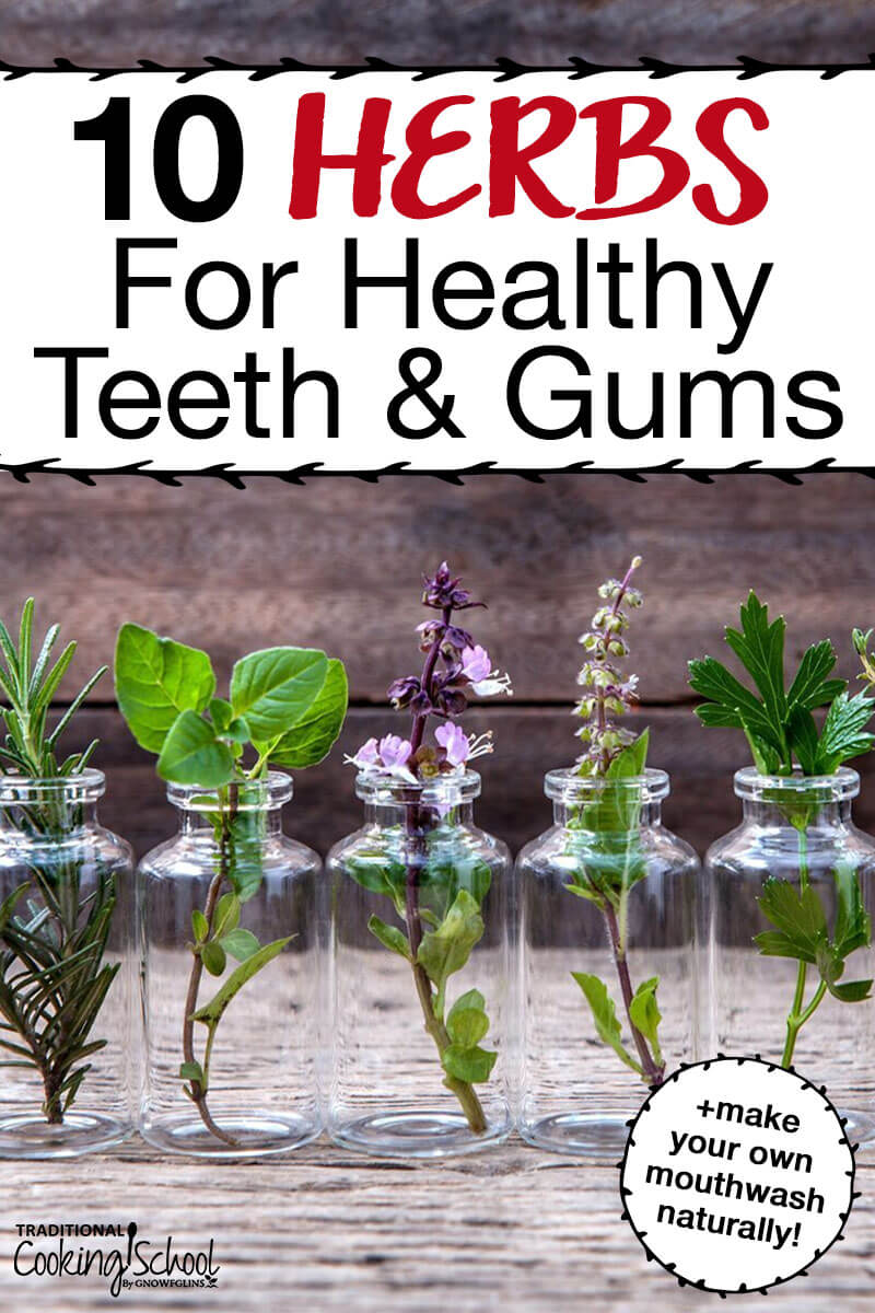 10 Natural Makeup Ideas For Everyday: Top 10 Herbs For Healthy Teeth PLUS DIY Natural Mouthwash