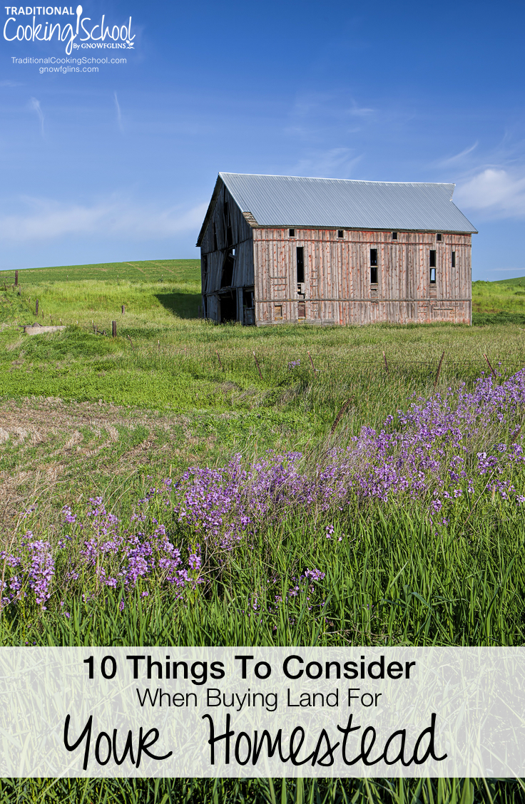 10 Things To Consider When Buying Land For Your Homestead | When we began to consider our move to the country, purchasing land was intimidating. Neither of us (my husband nor I) had made that kind of purchase before. While there are many things to consider when purchasing an acreage, here are 10 important things that we learned (some the hard way) along the way. | TraditionalCookingSchool.com