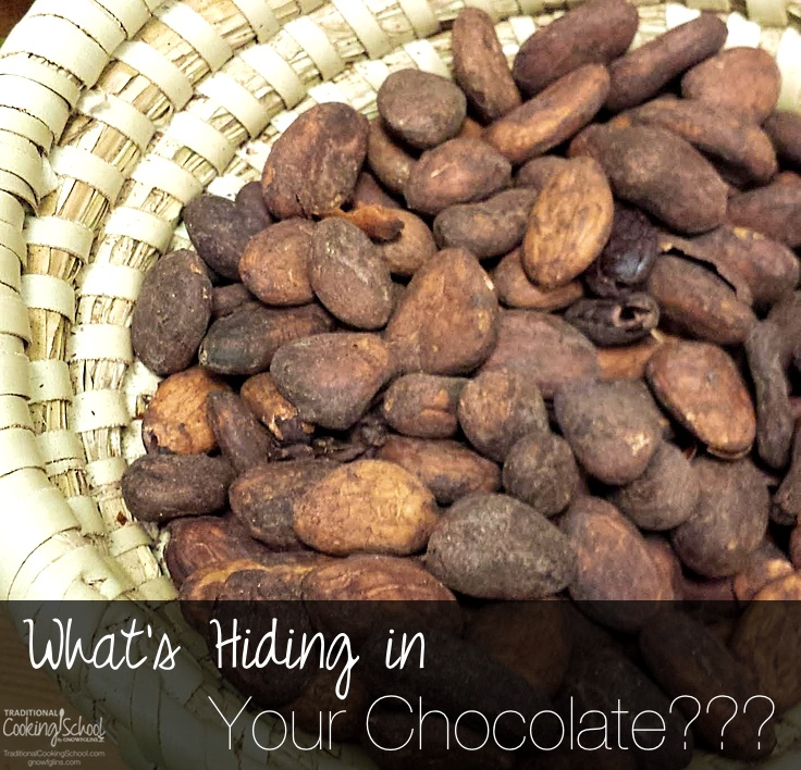 Chocolate is one of my must-haves. Can I get an amen? However, after looking at the ingredients in a regular chocolate bar, I couldn't eat it without a major prickle in my conscience... | TraditionalCookingSchool.com