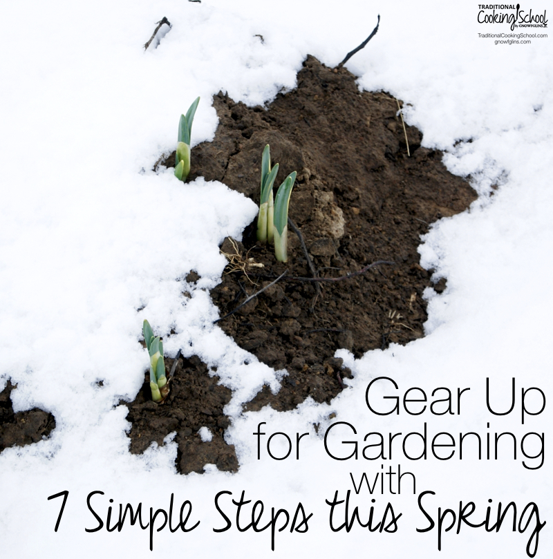 Your garden may yet be under a blanket of heavy snow, or the weather freezing cold, but you can do these 7 simple steps right now to be prepared (and maybe a little ahead) when things finally warm up.   TraditionalCookingSchool.com