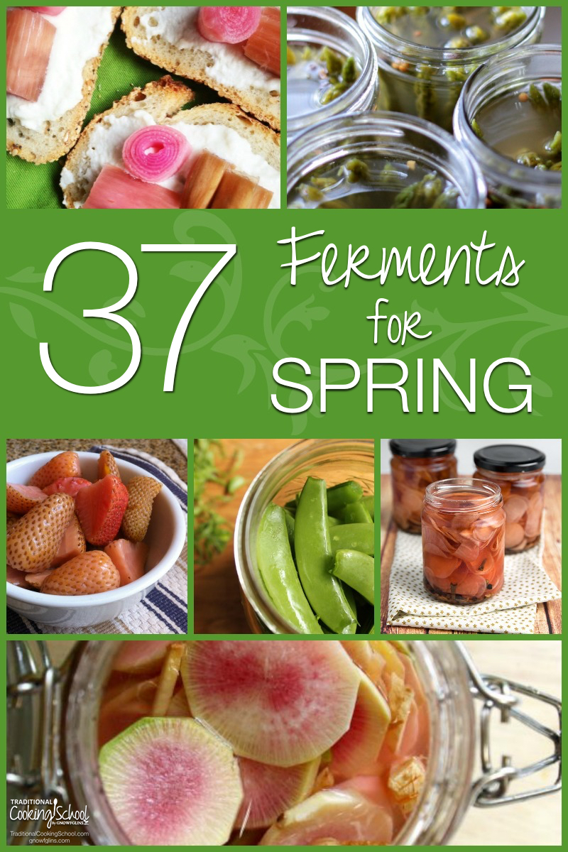 37 Ferments for Spring | I dare you. Scroll though these 37 beautiful ferments crafted from spring produce and tell me your mouth doesn't start watering even just a little bit. Beautiful color, a crunch you can practically feel, and I bet your lips are even puckering (with delight). As if that wasn't enough, fermentation causes an explosion of enzymes, beneficial acids, and probiotics -- all good for the gut and the immune system. | TraditionalCookingSchool.com