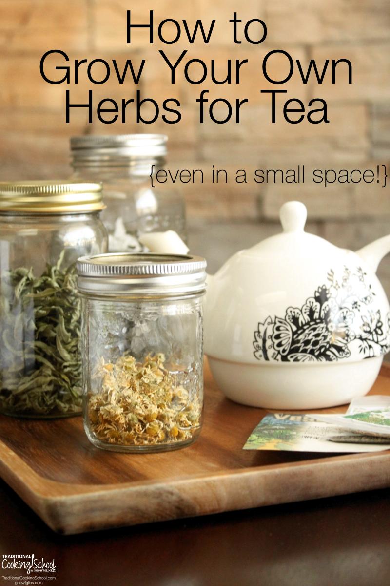 How To Easily Grow Your Own Tea Herbs