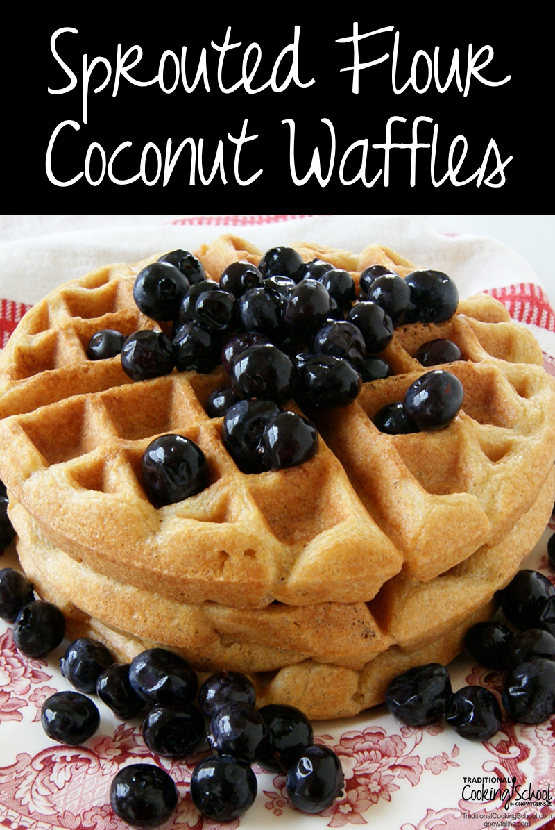 Sprouted Flour Coconut Waffles {no soaking required!} | Coconut milk, coupled with coconut oil and sprouted flour, makes for a stack of waffles with the best texture and flavor we've ever had. Plus... no wait-time for soaking or souring because the flour's already sprouted! | TraditionalCookingSchool.com