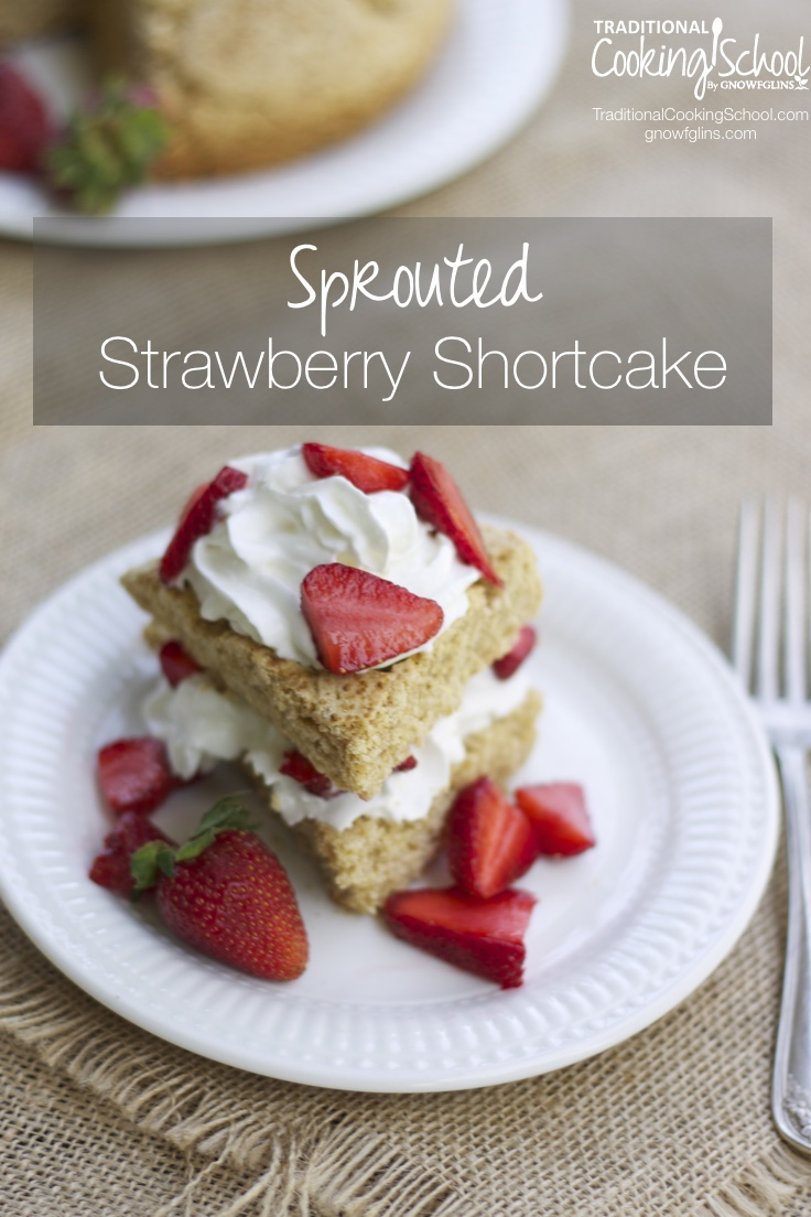 Sprouted Strawberry Shortcake | Strawberries are perfect on their own, but I love adding them to a lightly sweetened dessert (like... shortcake!) for a spring treat. For this recipe, I use a sprouted pastry flour to create a slightly sweet biscuit baked as one large disk. Top with strawberries or any seasonal fruit! | TraditionalCookingSchool.com