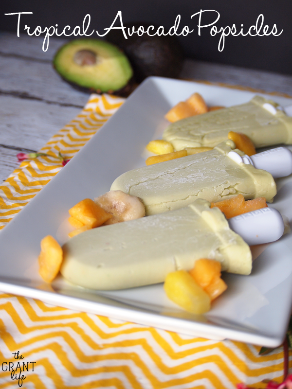 22 Delicious Healthy Dairy-Free Popsicle Recipes   When the summer sun beats down, a popsicle is a refreshing treat, and there's no longer any need to head to the local store! These 22 popsicles, fudgesicles, and creamsicles are all dairy-free, naturally-sweetened, and in most cases, can be whipped up in just a few minutes.   TraditionalCookingSchool.com